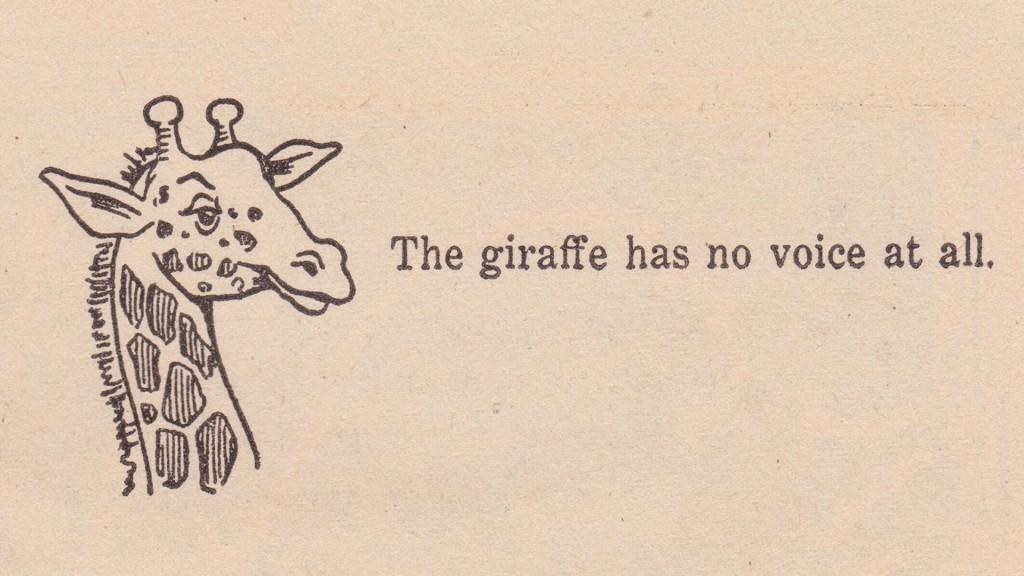 giraffe has no voice at all