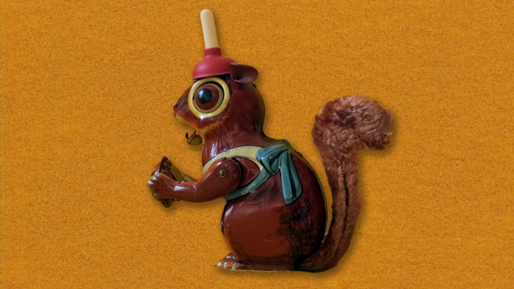 walter squirrel