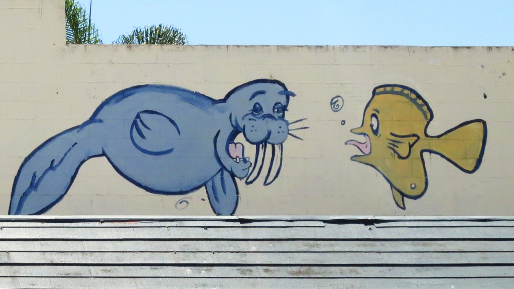 walrus fish on wall san diego 1