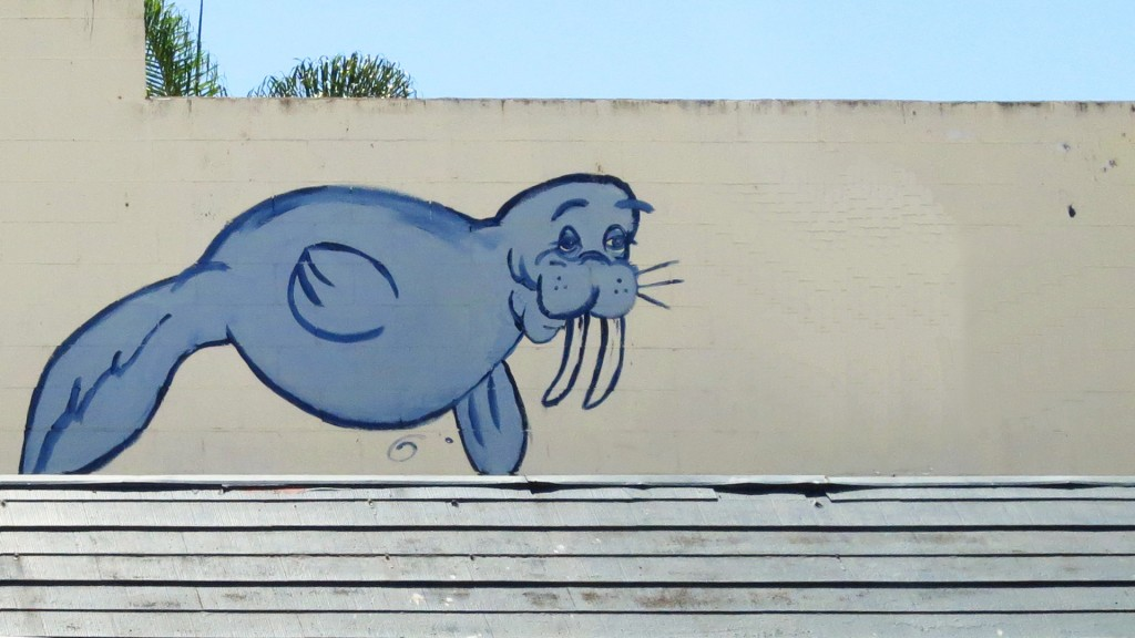 walrus fish on wall san diego 2